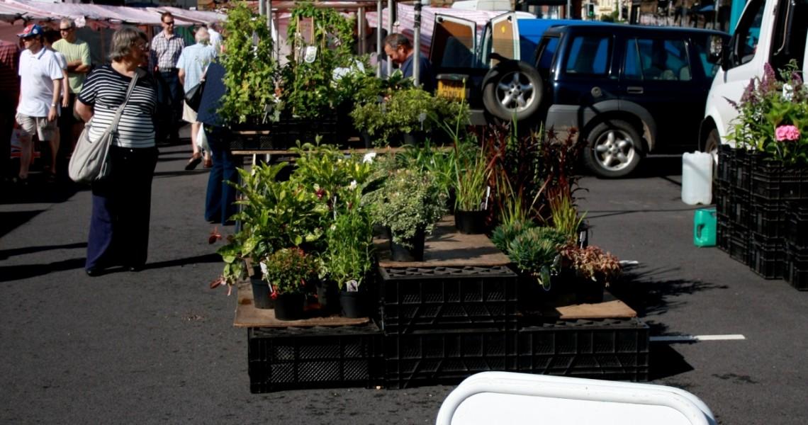 Stokesley's Farmers market, Stokeley, Stokesley Food week